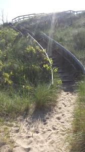 Walkway to the dunes