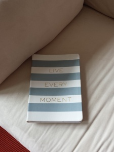 I like this journal for mantras and general life-improvement ideas and plans.