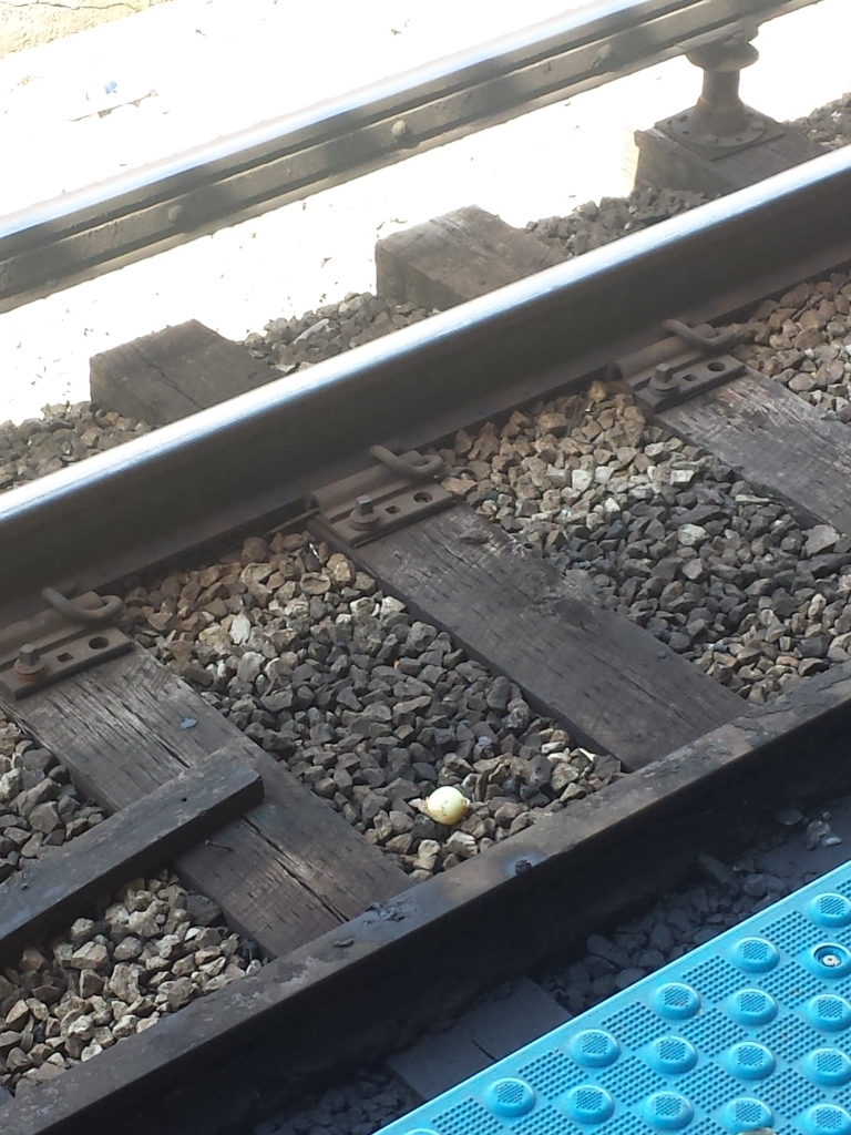 Why a photo of a peeled onion on the red line tracks? Because it matches the last few posts and really ties the room together.