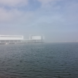 Day 1- Fog surrounds the Discover Center